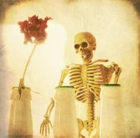 still life with a skeleton by Amalus