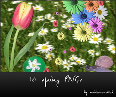 spring - transparent png by rainbows-stock