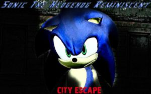 Sonic The Hedgehog Reminiscent City Escape 3 by shadow759