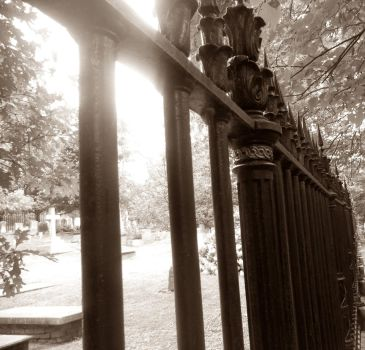 Fence by limeolive