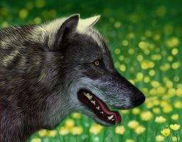 Wolf Portrait by Evorstar