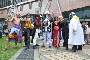 One Piece CF2011 Day 1 by riezforester