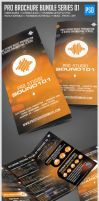 Pro Brochure Bundle Music, Photo, Art Edition by ShermanJackson