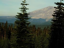 Mt. St. Helens on a summer day by Huntbear