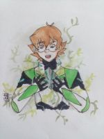 Happy Birthday Pidge by AnnHolland