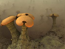 Fungi In The Fog by AureliusCat