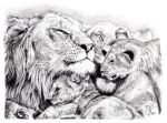 Quick pencil sketch of a lion's family by chaseroflight
