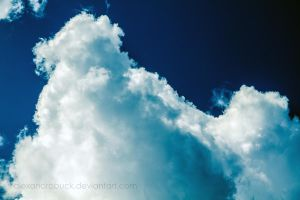 Clouds of Fluff. by AlexandraBuck