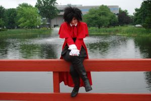 Alucard: Sitting on the Fence by BLUEsteelProductions