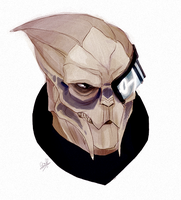 Garrus by rollingrabbit