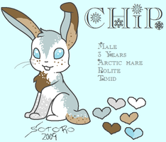 Chip Ref Sheet by bluesunsetfox