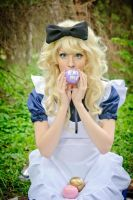 Alice in Wonderland by kalepa