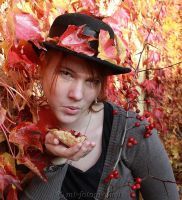 autumn colors on special art 3 by MT-Photografien