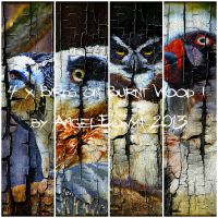 Birds on Burnt Wood Texture Pack 1 by AngelEowyn