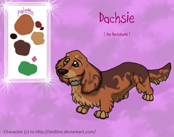 Dachsie Ref Sheet by Stelline