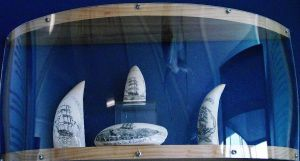 The noble art of Scrimshaw by LadyGhostEyes