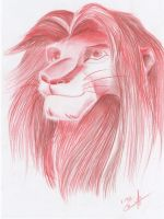 The Lion King - Simba by HermioneHouse