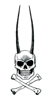 jolly roger by Rabbit-Hill-Ink