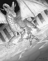 Dungeon and Dragon by Shabazik