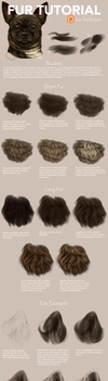 Patreon - Fur Tutorial by Simkaye