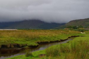 Sodden Landscape by Fat-Angry-Pigeon