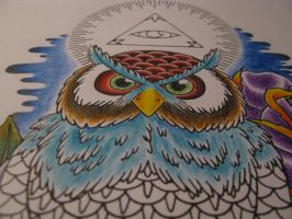 owl and the eye by Drewgovan