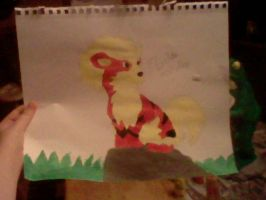 Arcanine Painting by Zelda-Wolfy