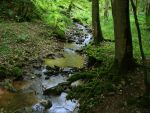 river 16 by Pagan-Stock