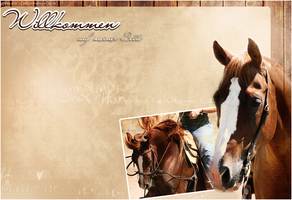 Howrse Layout: Quarter Horse by crystalcleargfx