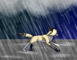 Running In The Rain by Elluu999