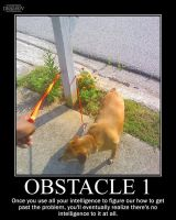 Obstacle 1 -demotivation- by Dragunov-EX