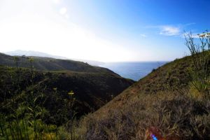 Channel Islands Look Out by Dilznacka