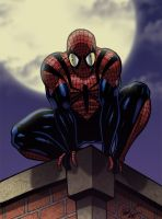 Ben Reilly as Spiderman by anubis2kx