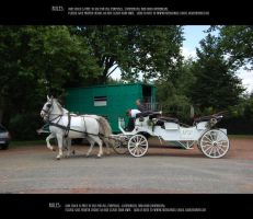 Wedding chariot 6 by Mithgariel-stock