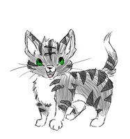 Silver Tabby Cat by Nixhil