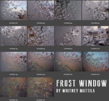 Frost Window (zip collection) by Tanyuuu