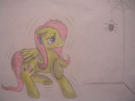 Flutter Shy and the spider by NightMareBabe14