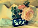 The Beatles by NinjaKittyLove