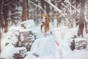 Winter tale by MorielCorsetry