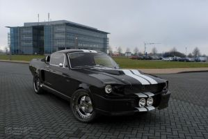 Ford Shelby GT 500 by Foto-M 2 by AnalyzerCro