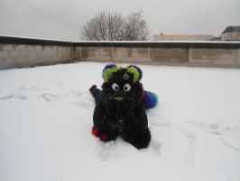 Reskell lying in the snow at the Liverpool Furmeet by Lockian