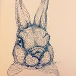 Little bunny by Pookpic