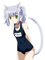Chaika Swimsuit by Stuffnco