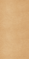 Light Brown Custom Box Background by SimplySilent