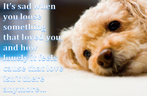 Makes Me Cry.... by Lifes-what-u-make-it