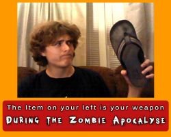 Zombie Weapon Meme by AirTyler