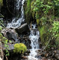 Waterfall at Bridal Veil post office by lupagreenwolf