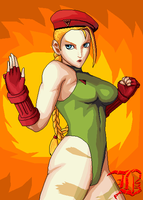 Cammy Fighting Stance by BassMS