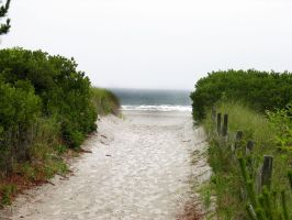 Storm Approaching Dune Stock 3 by FairieGoodMother