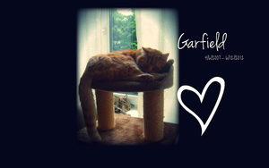 R.I.P. Garfield by Fleshgrinder